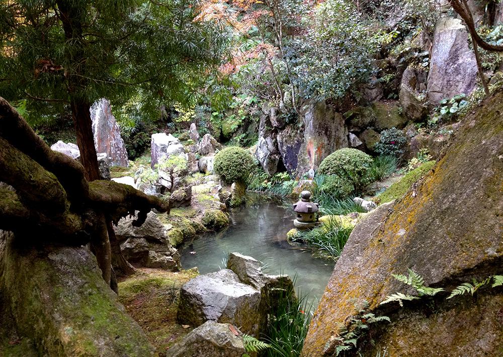Bassin et carpes koi à Mitaki