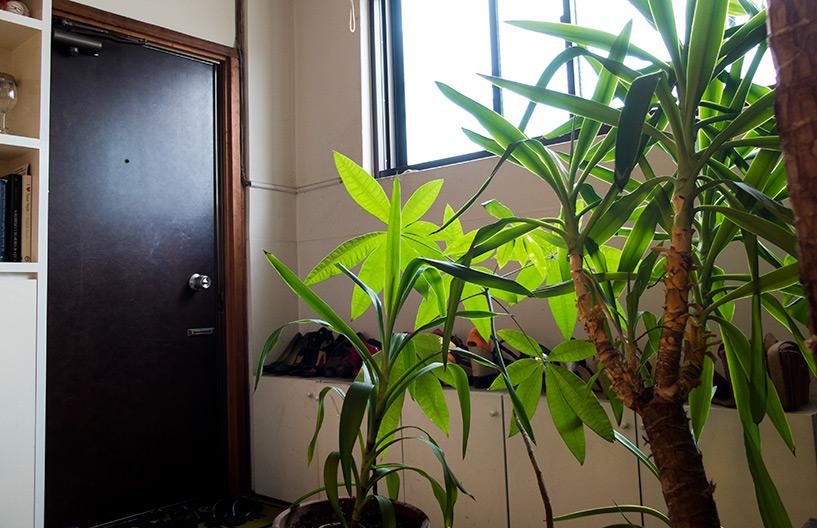 genkan, entrée de maison japonaise