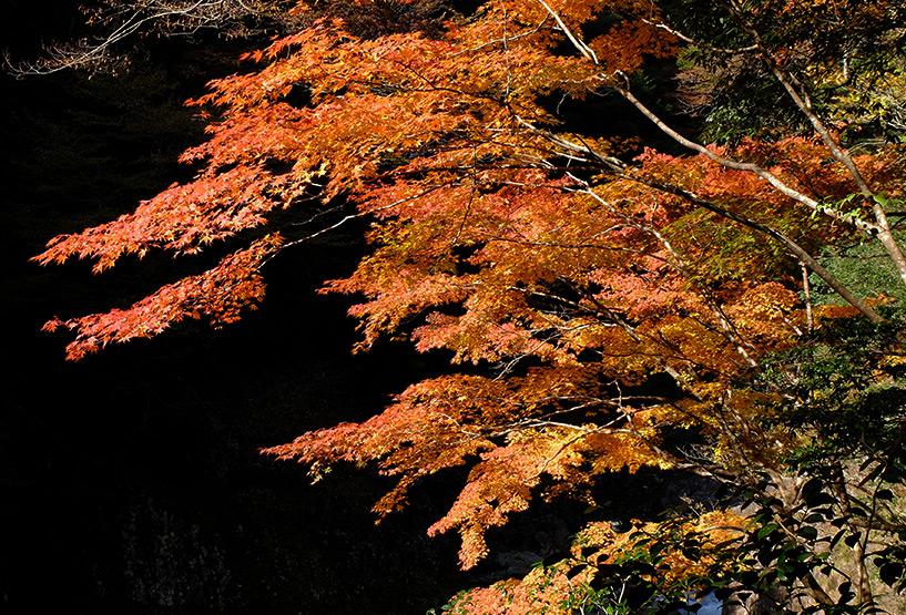 Sandankyo en automne