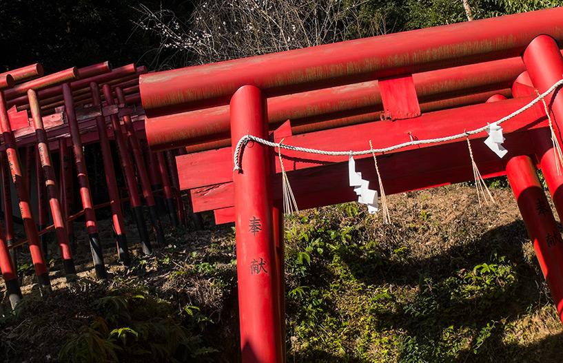 torii rouges du sanctuaire Kinko Inari Hiroshima