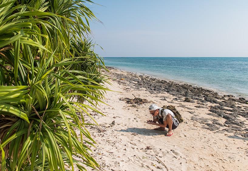 plage de Kaiji et son sable étoilé, Taketomi-jima, Okinawa