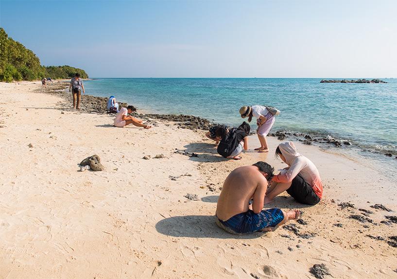 plage de sable étoilé, Kaiji beach, Taketomi-jima