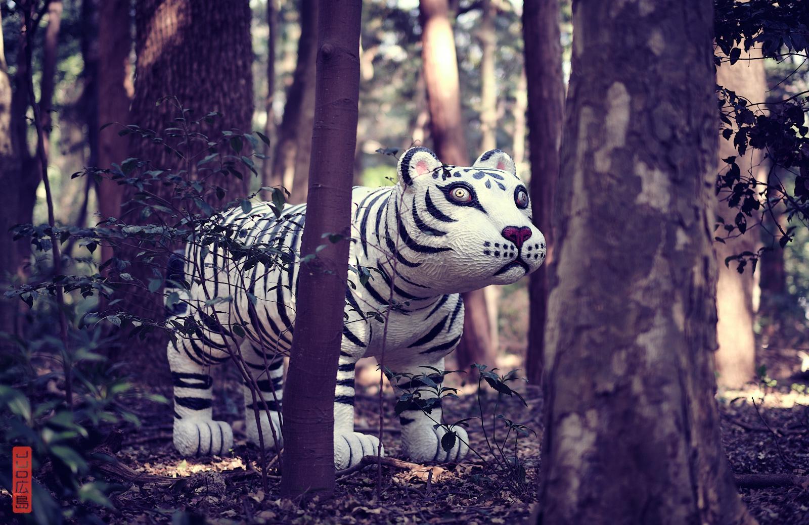 tigre dans le parc de Meiji Jingu, Tokyo, Japon