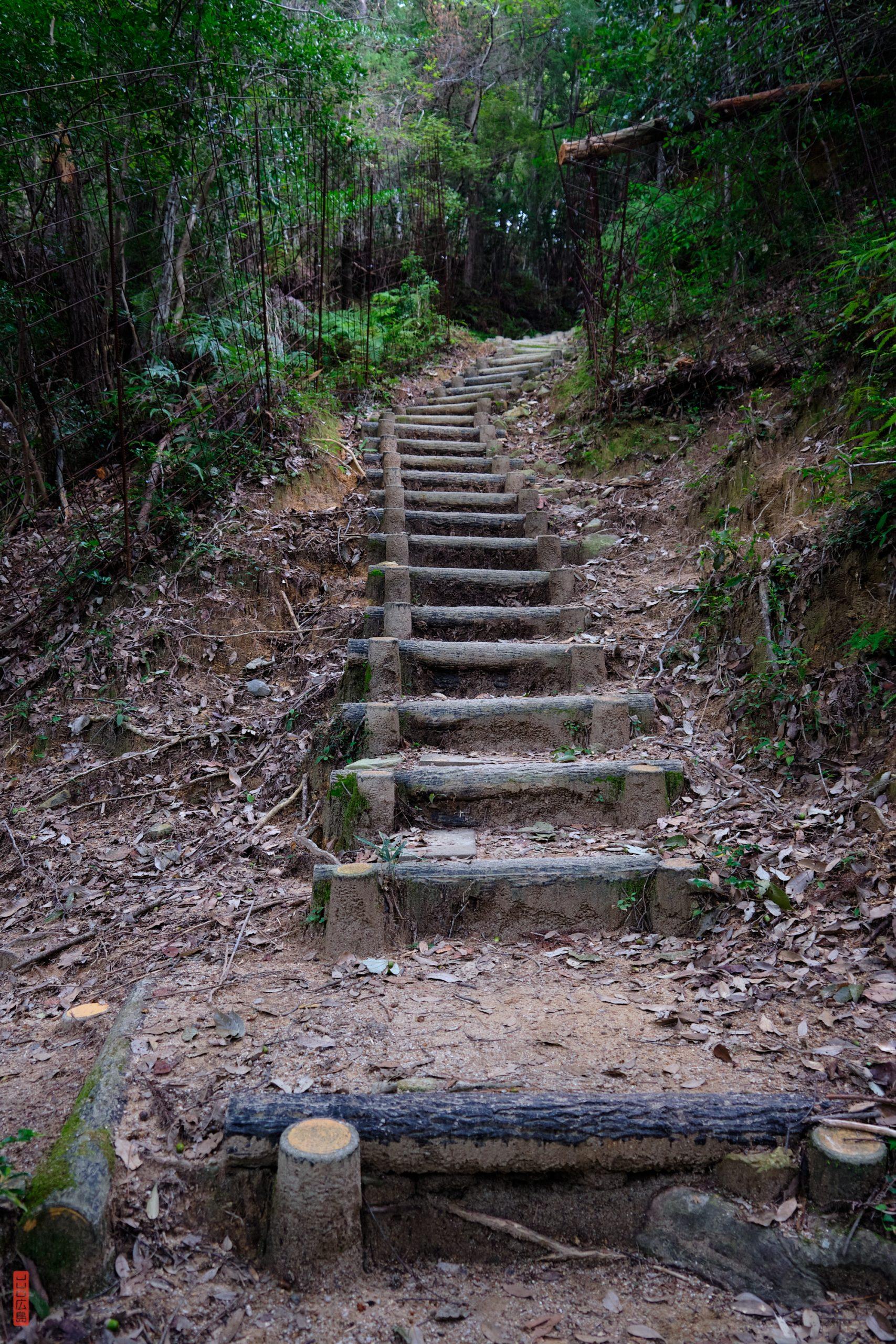 escaliers sur le chemin de randonnée du mont Shirakiyama