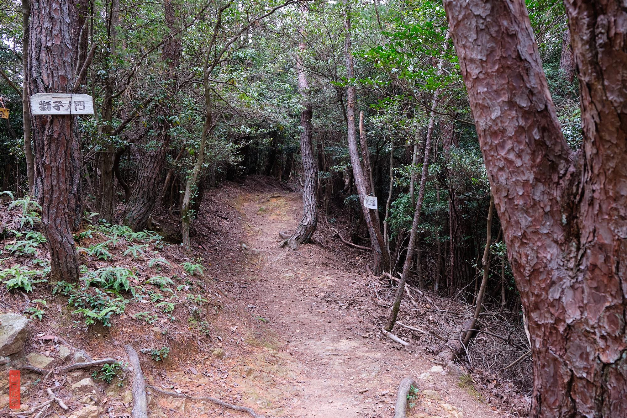 Randonnée sur le Mont Shirakiyama