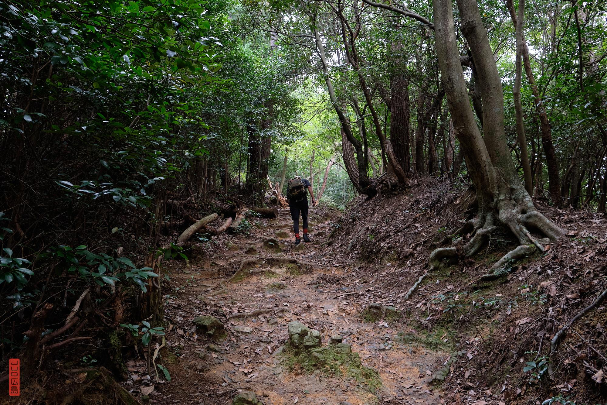 Mont Shirakiyama, randonnée au Japon