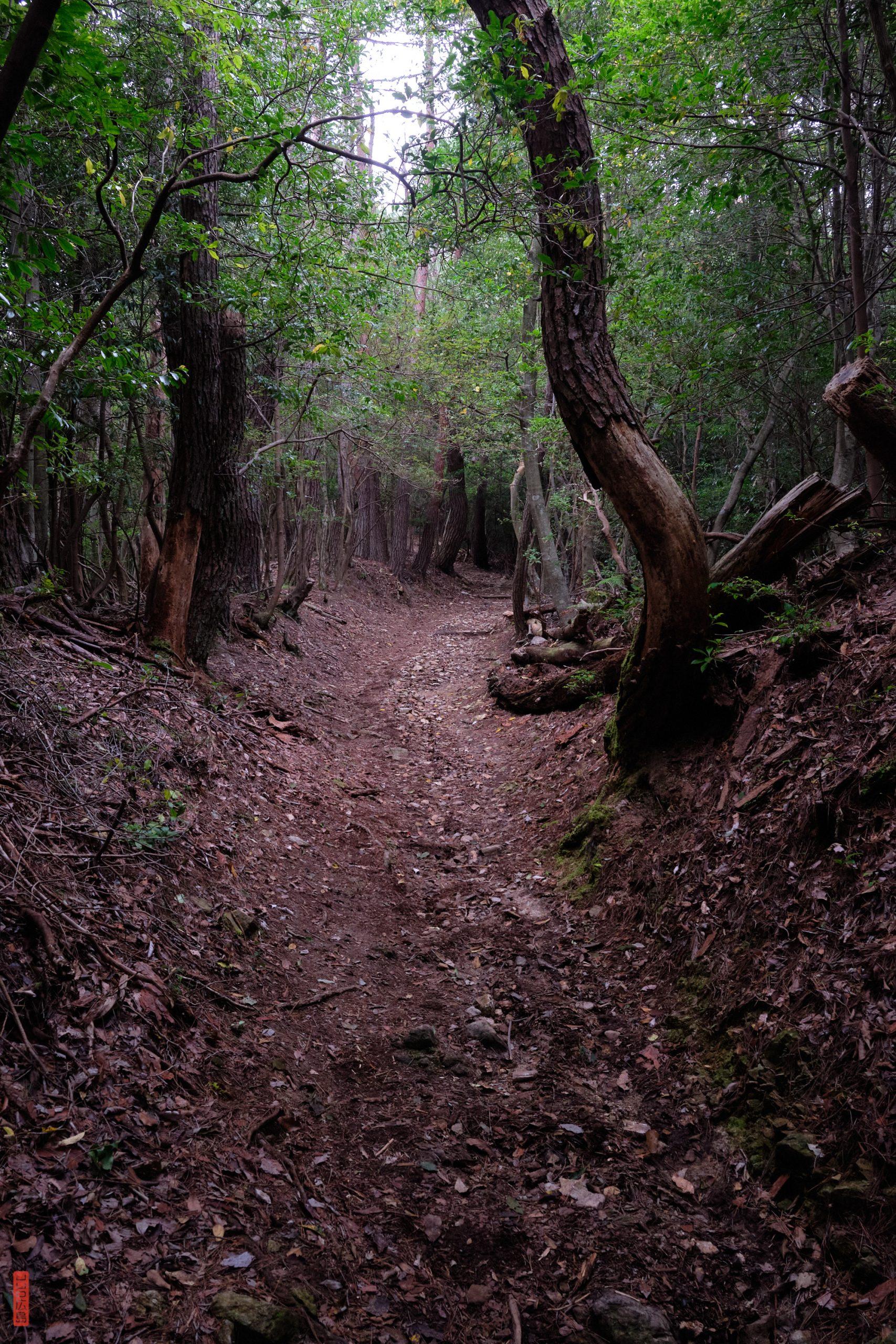 Shirakiyama, chemin de randonnée
