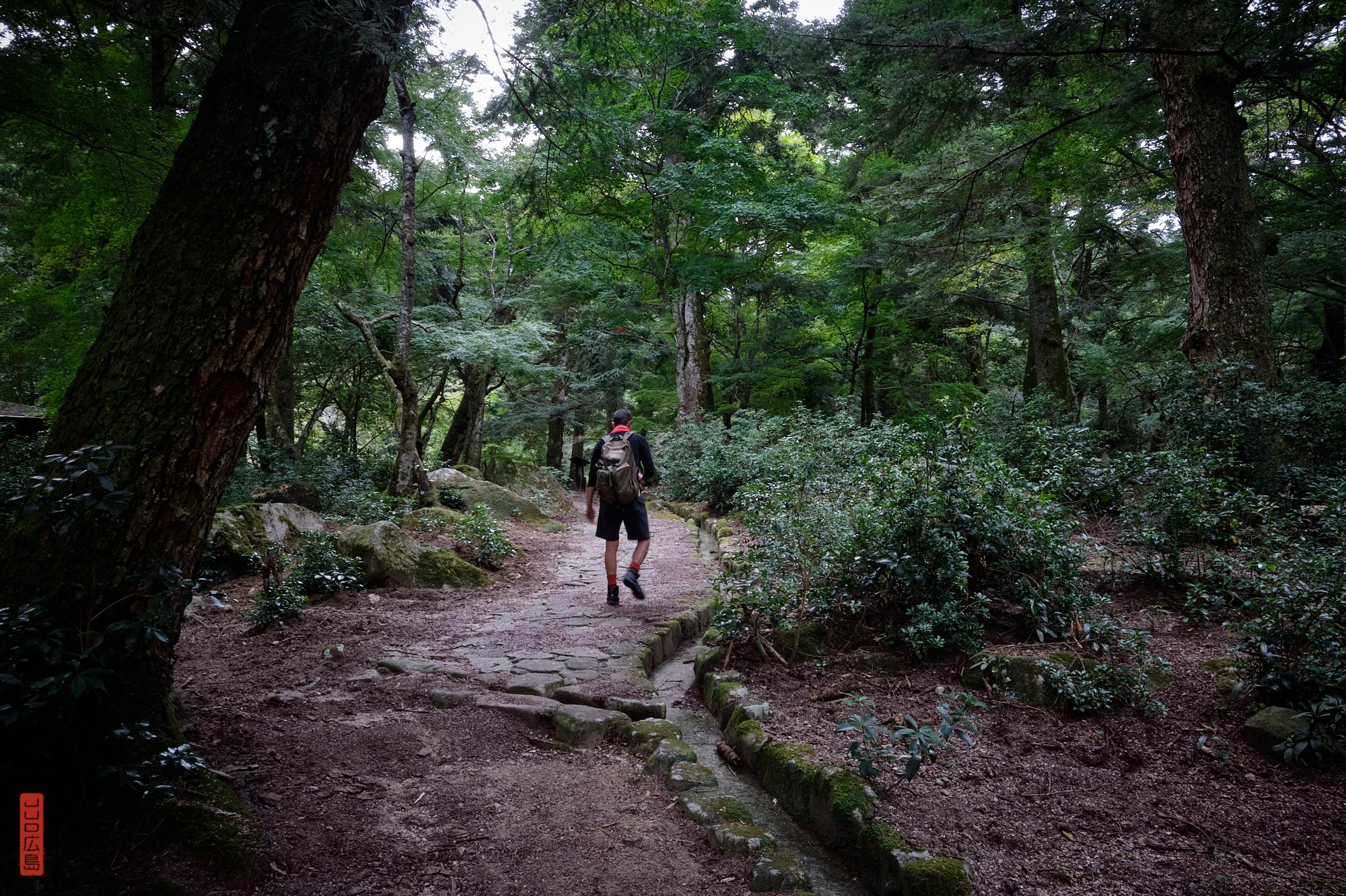 chemin Omoto, randonnée sur le Mont Misen