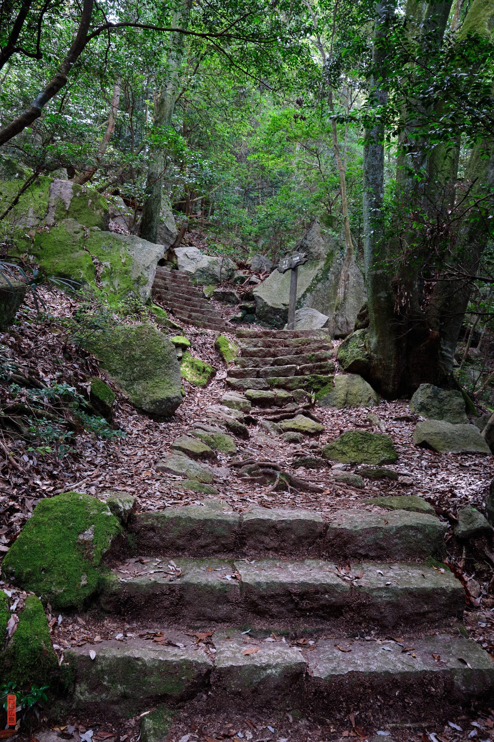 Des chemins qui grimpent bien, randonnée Mont Misen