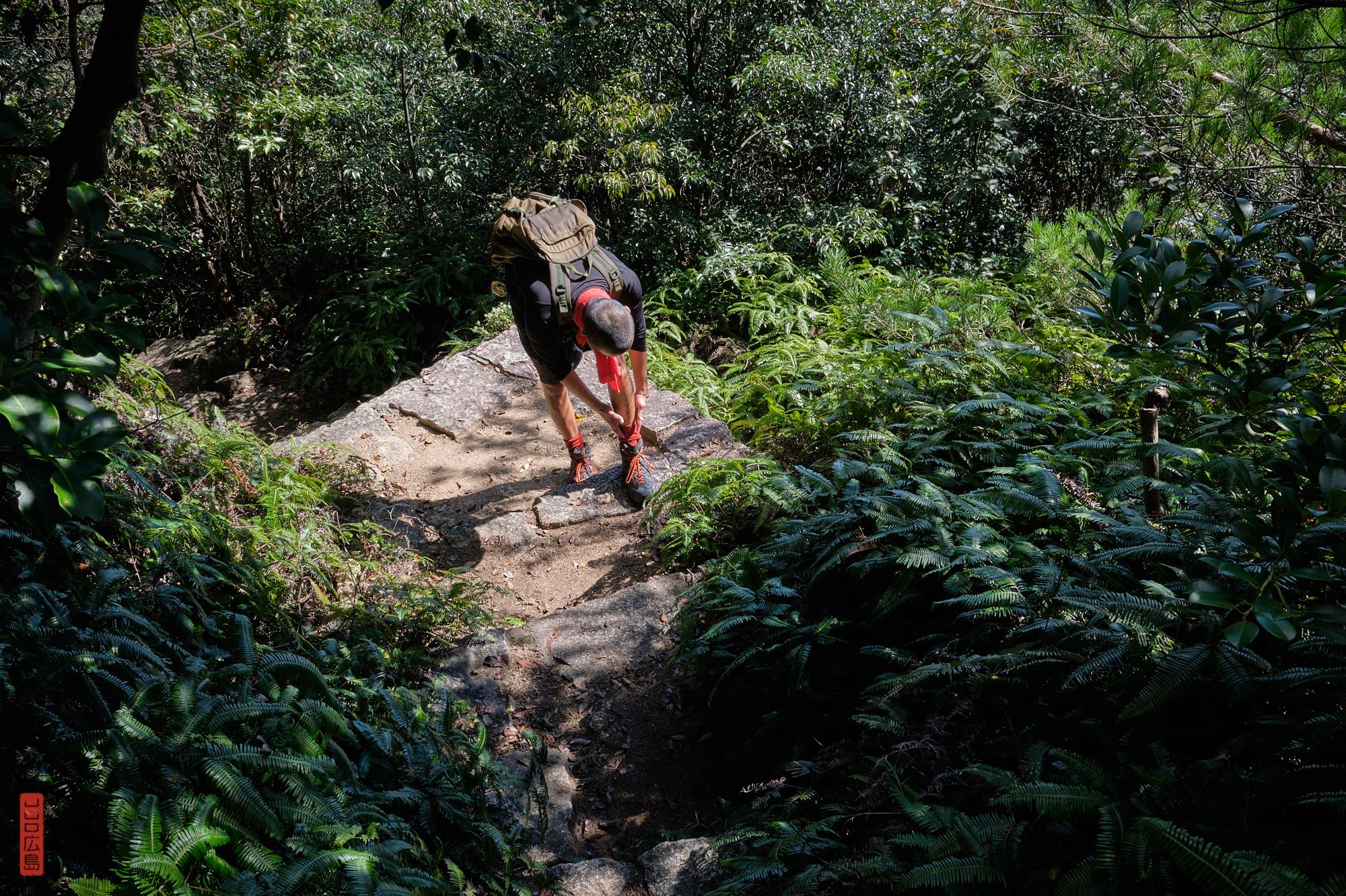 sentier de randonnée dans les monts de l'île Miyajima, Japon