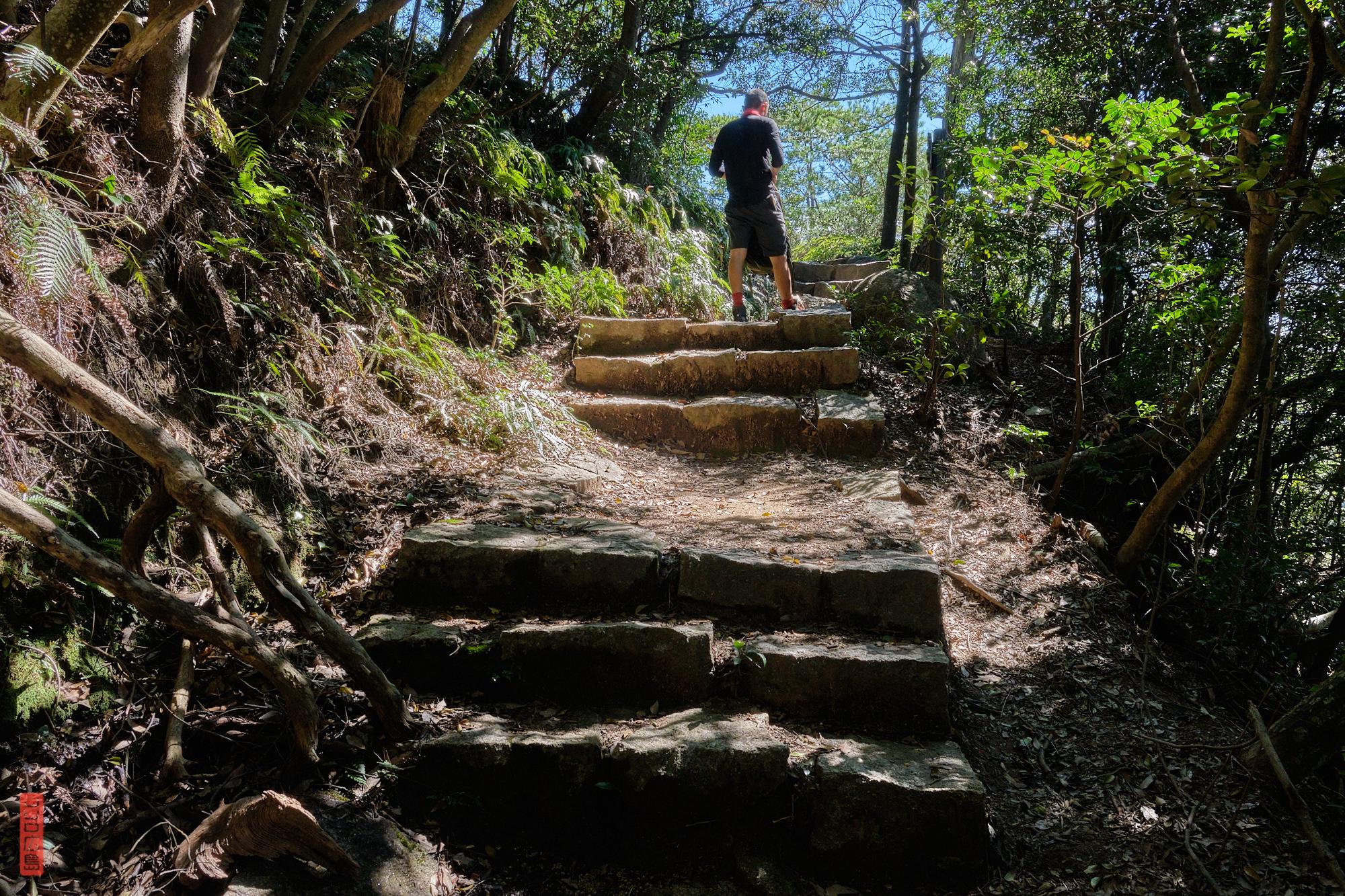 chemin ensoleillé aux abords du Mont Komagabayashi