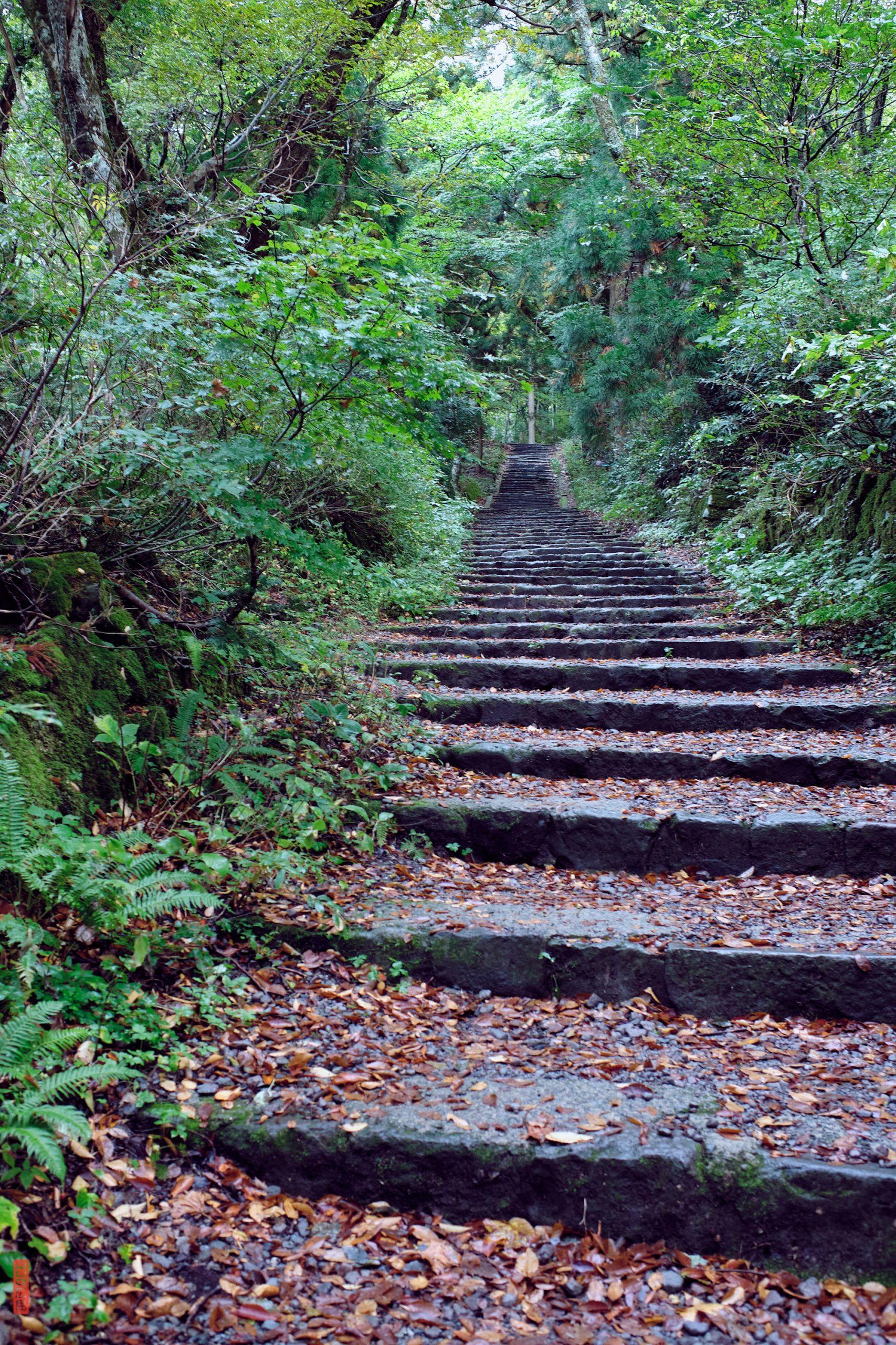 Marches du chemin de randonnée du Mont Daisen