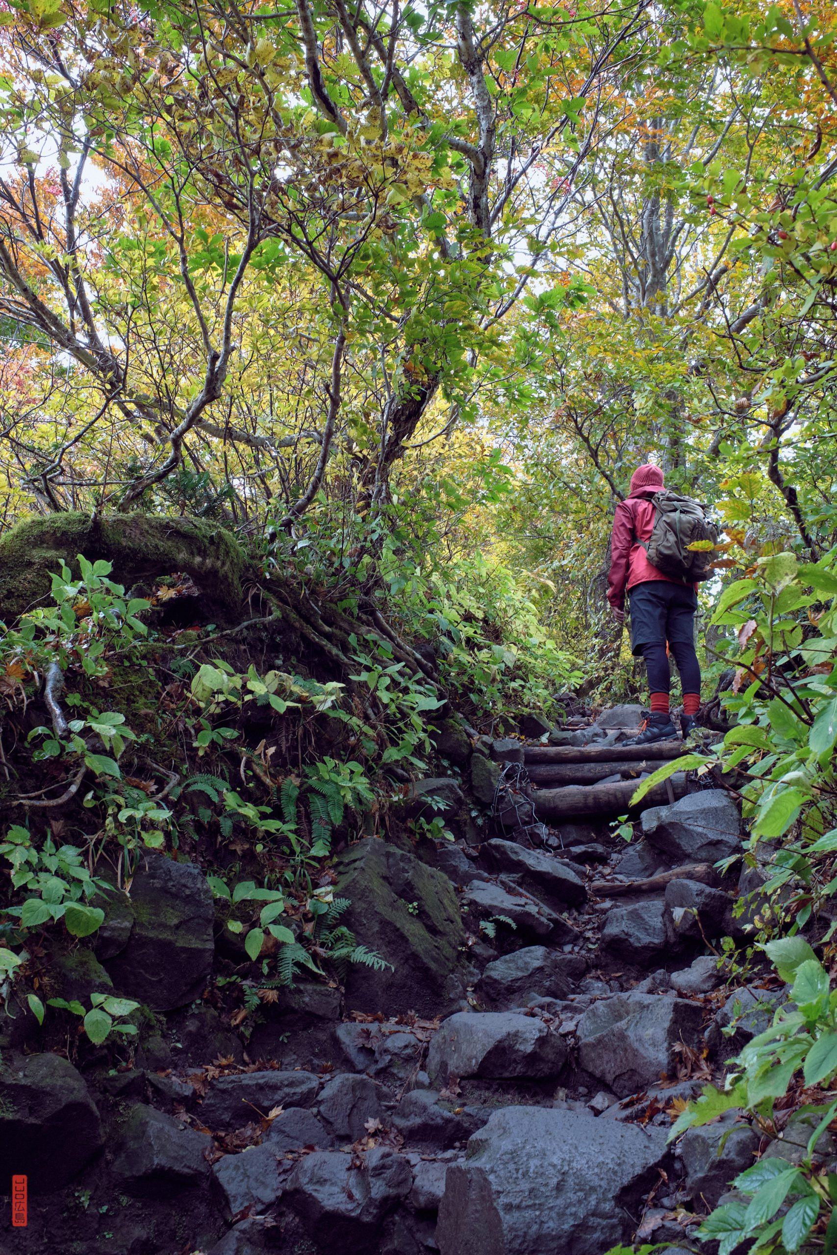 Randonnée en montagne au Japon, le mont Daisen