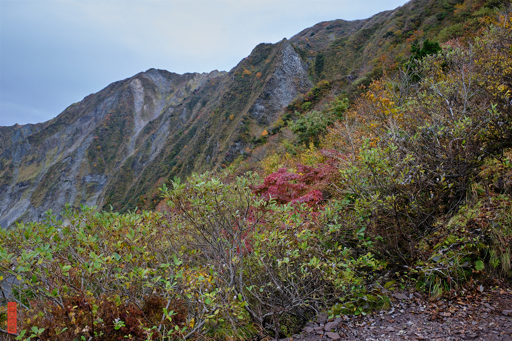 les flancs du mont Daisen