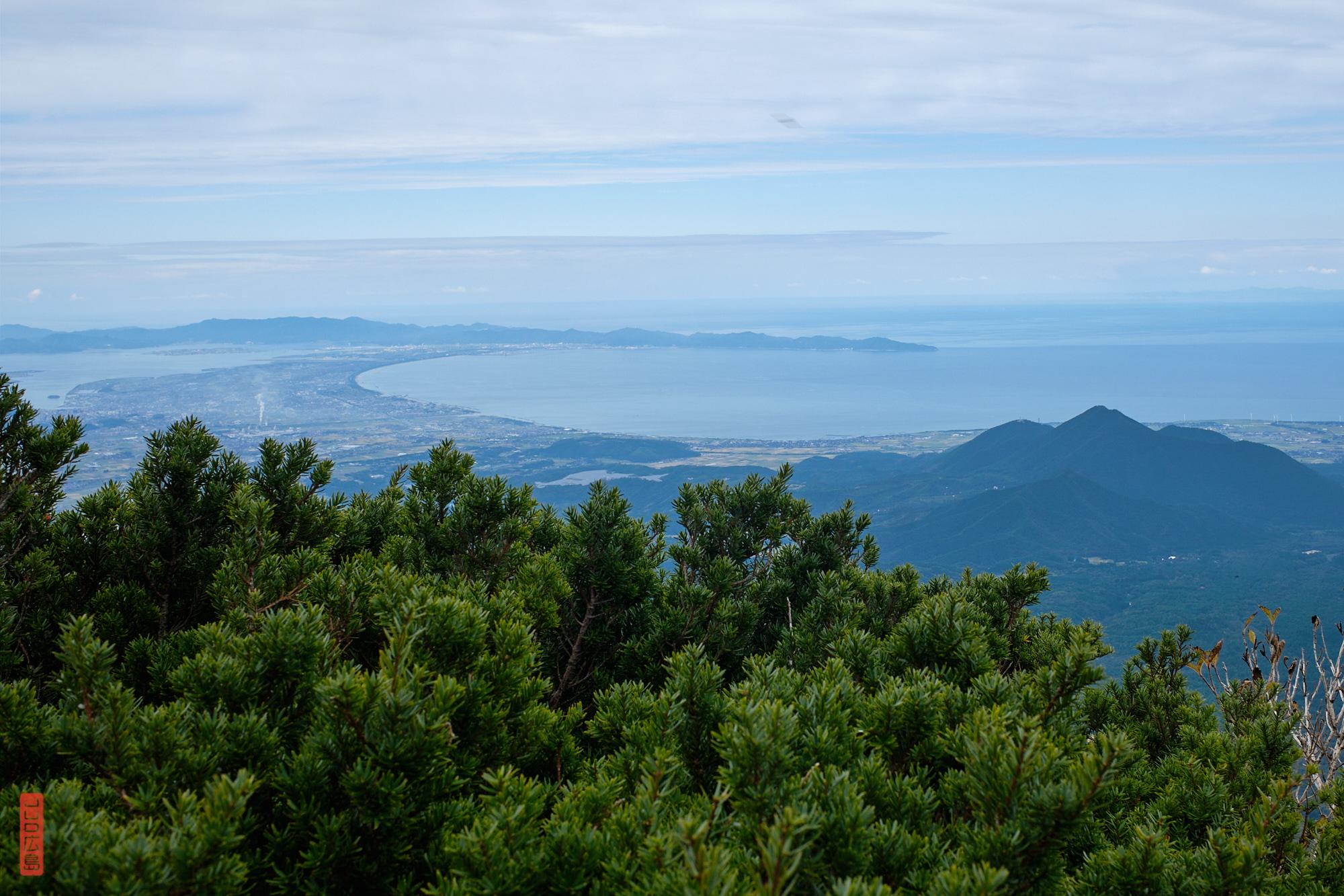 buissons de kyaraboku et vue sur la péninsule Yumigahama