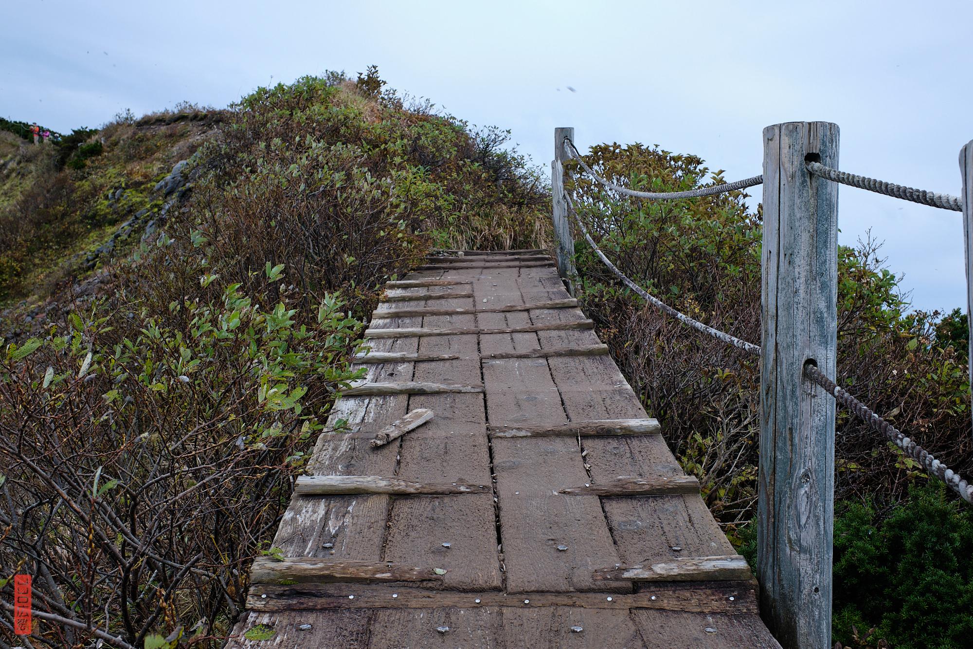 sommet du mont Daisen, pontons de bois