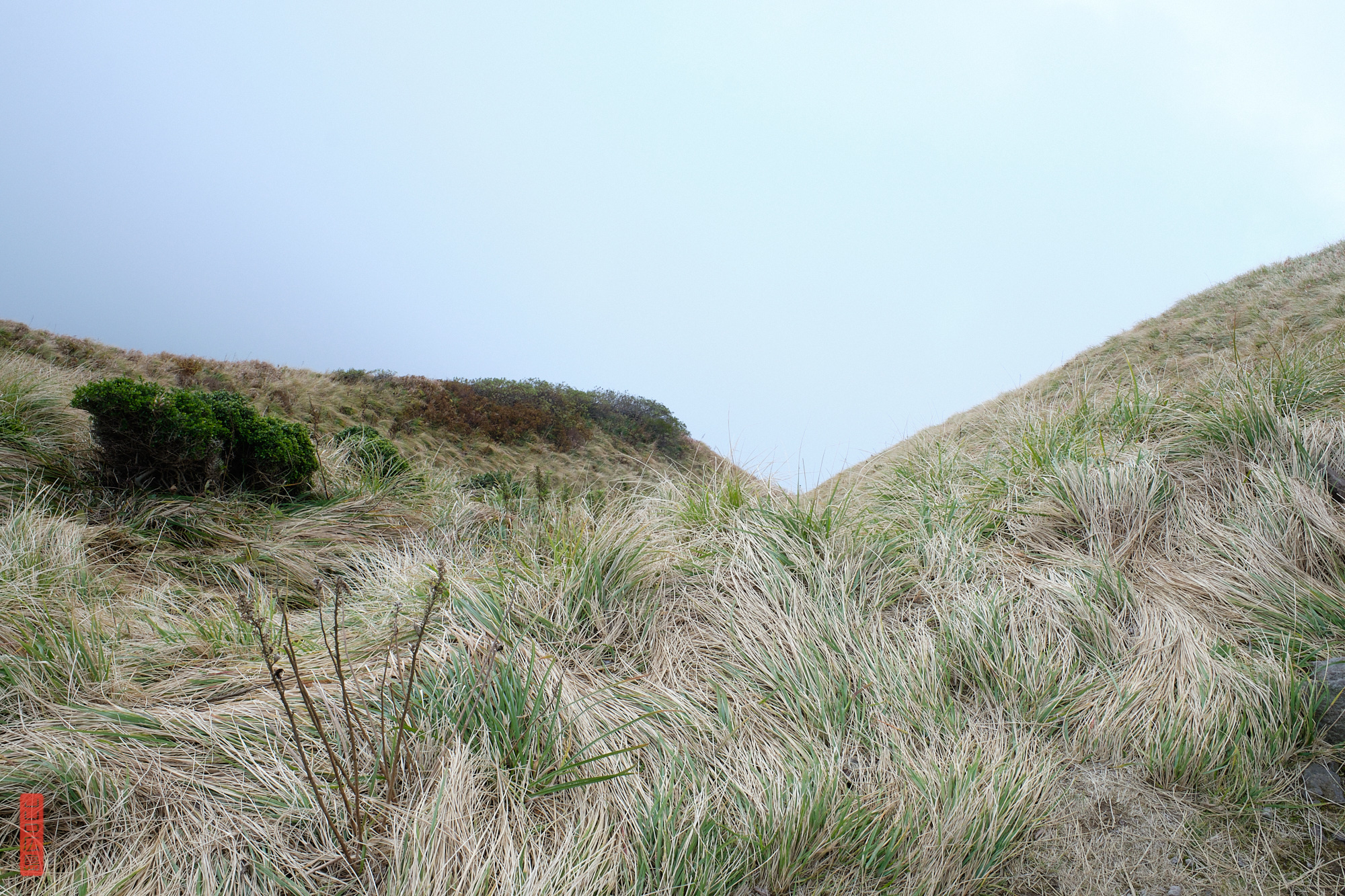 Sommet du mont Daisen