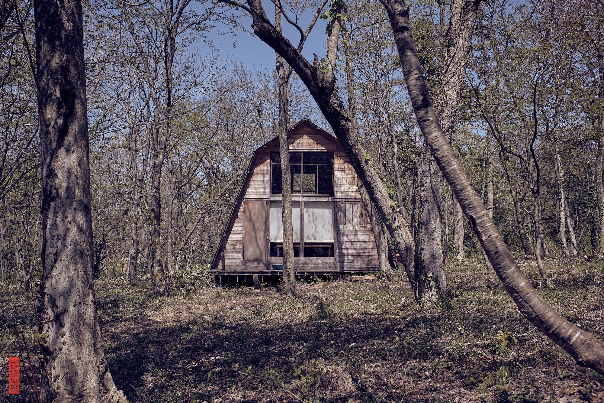 des cabanes dans la forêt, Japon