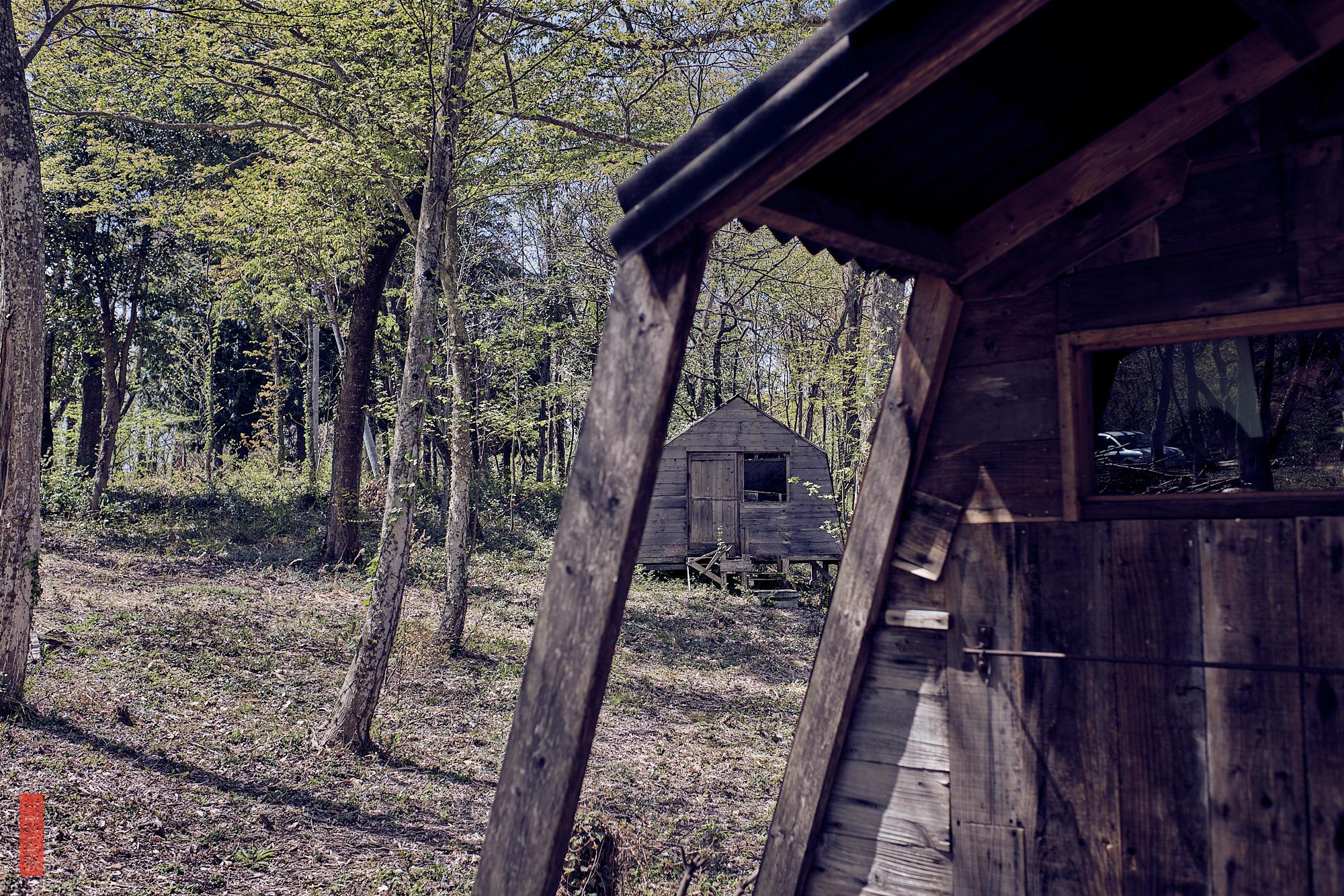 Un café et des cabanes dans la forêt