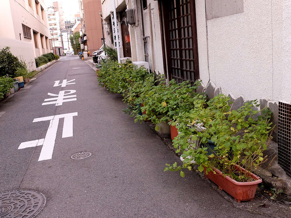 rues fleuries Yokogawa
