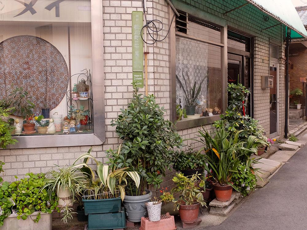 allées fleuries Yokogawa
