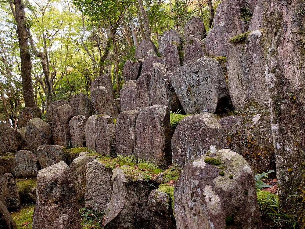 pierres et mousse à Mitaki