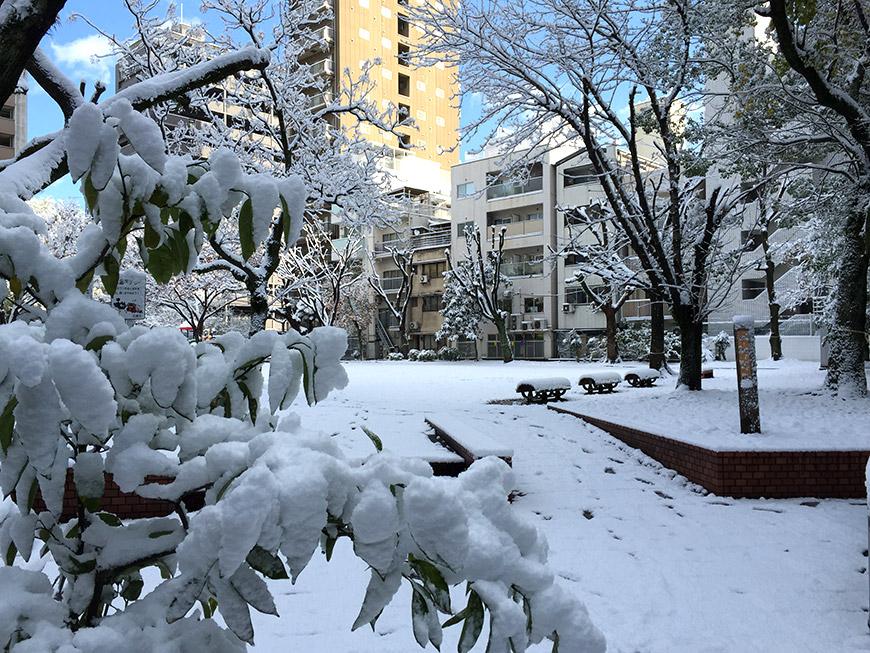 Parc de Nobori-machi enneigé, Hiroshima