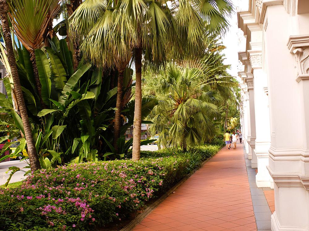 Victoria Street Singapour