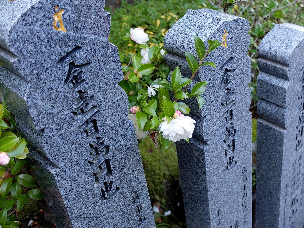 Temple Daisho-in, Miyajima