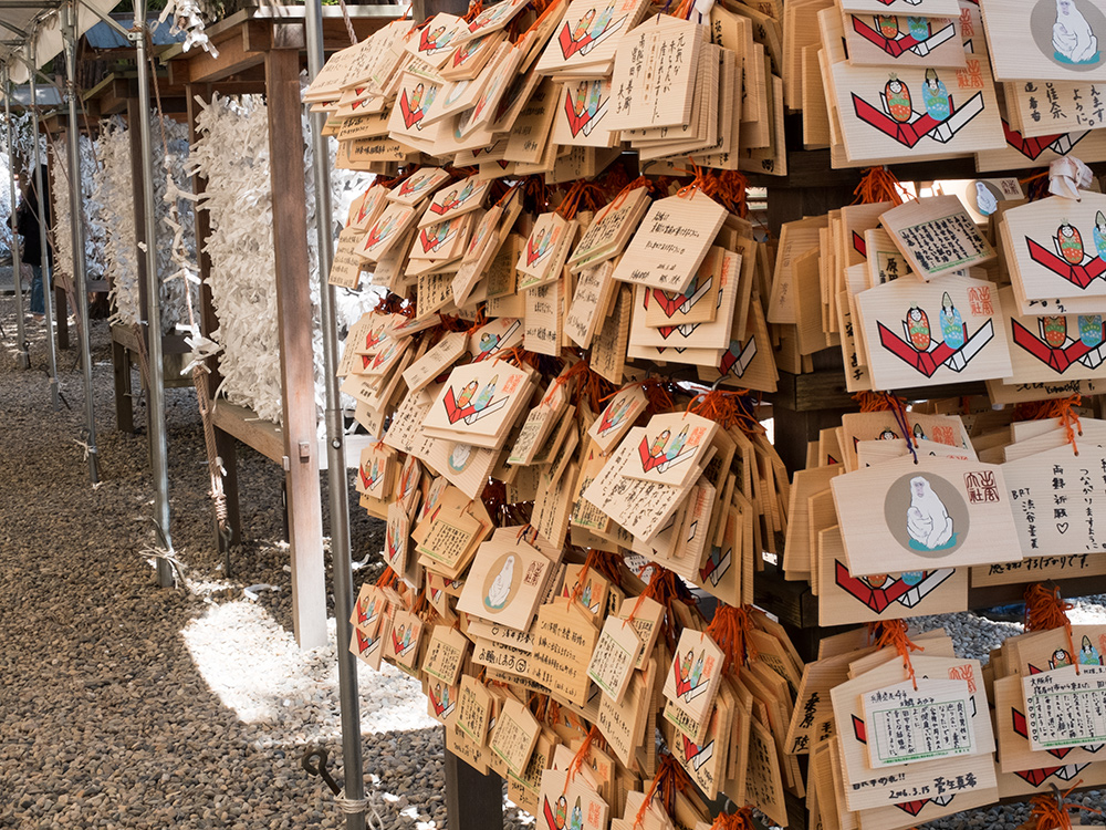 omikuji et plaquettes ema au sanctuaire Izumo Taisha