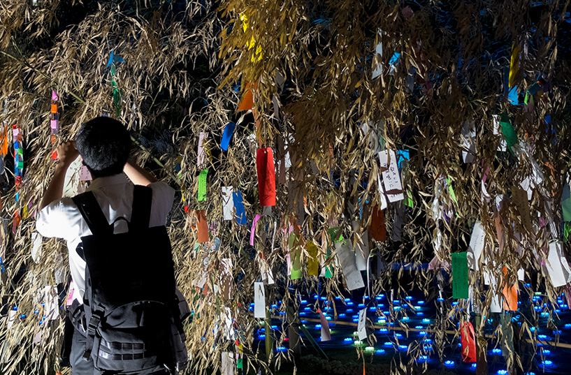 tanzaku sur les branches de bambou pour Tanabata Hiroshima