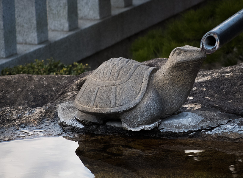 estatue de tortue, Japon