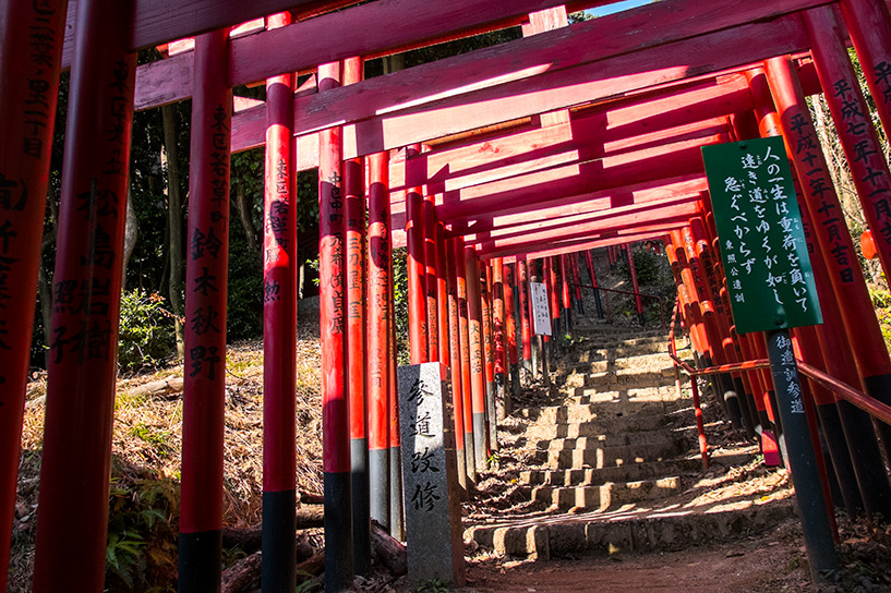 allée de torii rouges du sanctuaire Kinko Inari Hiroshima