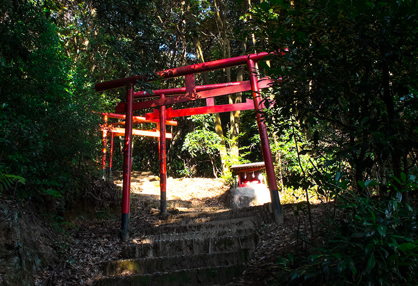 Torii dans la forêt du mont Futabayama Hiroshima