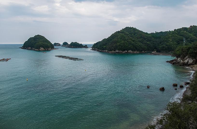baie de Mikoto, Kaifu